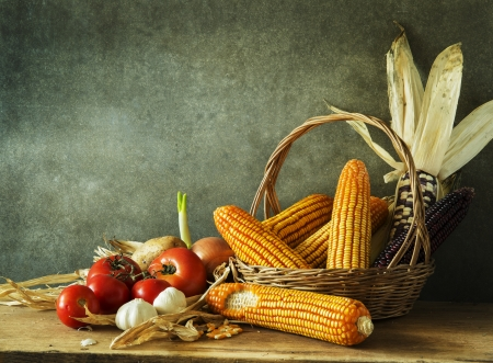 Still Life with pumpkin,corn,tomatoes, garlic, onions and potato in harvest