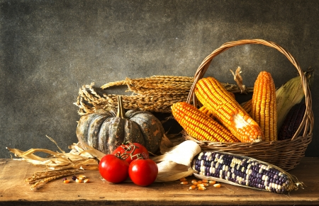 Still Life With pumpkin, corn and potato in harvest photo