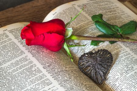 red book: Red rose on book and heart concept of love ,valentines day