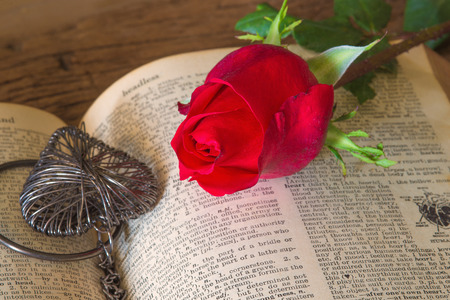 Red rose on open book and heart concept of love ,valentines day photo