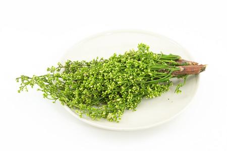 siamensis: Siamese neem tree, Nim, Margosa, Quinine (Azadirachta indica A. Juss. Var. Siamensis Valeton)