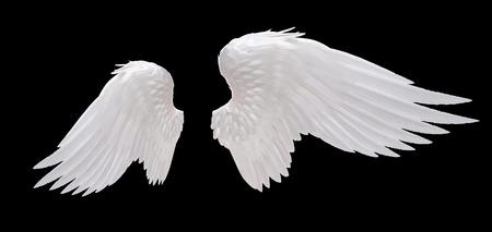 Witte engel vleugel geïsoleerde Stockfoto - 33688501