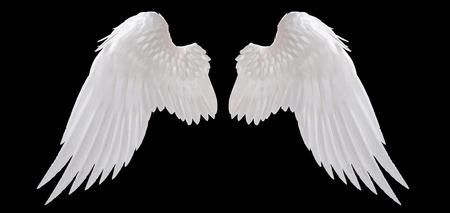 biały anioł skrzydła izolowane Zdjęcie Seryjne