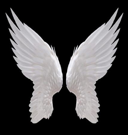 ali angelo: angelo bianco ali isolato Archivio Fotografico