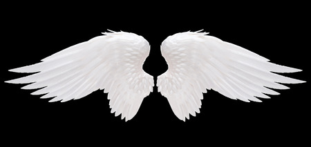 wings angel: angelo bianco ali isolato Archivio Fotografico