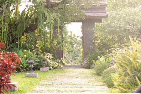 Pathway in garden nature with home door photo