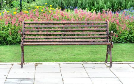 sigle bwnch in flower garden photo