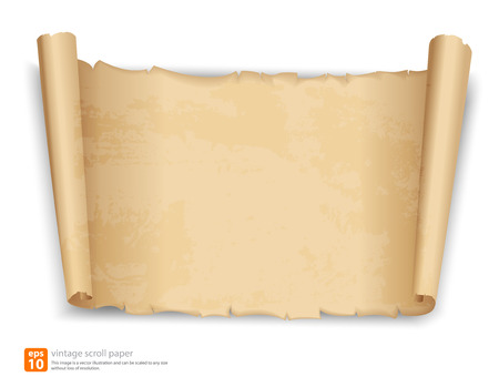 old page: vintage scroll paper vector format