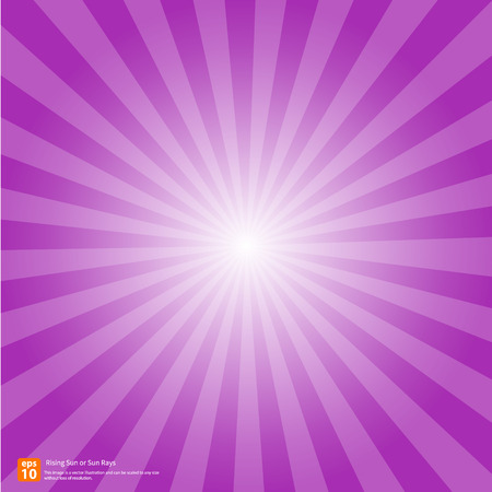 the rising sun: Nuevo sol púrpura ascendente o rayo de sol, sol ráfaga diseño vectorial