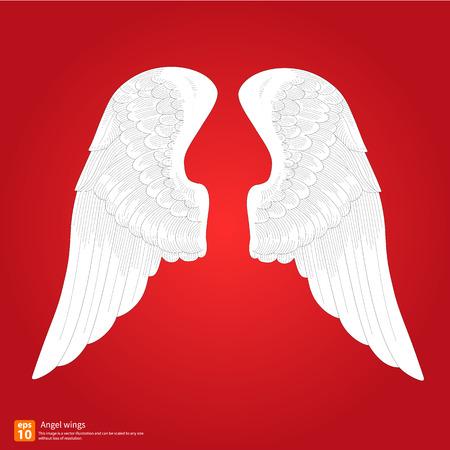 New angel wings vector design Vector