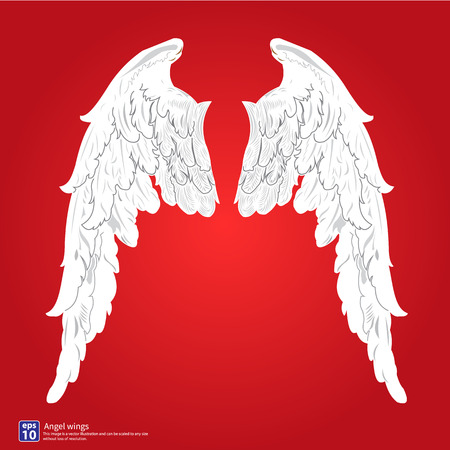 wings angel: Nuove ali d'angelo disegno vettoriale