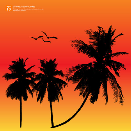 Silhouette coconut tree vector design sunset background Vector
