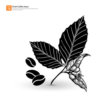 New silhouette coffee bean with leaf vector design