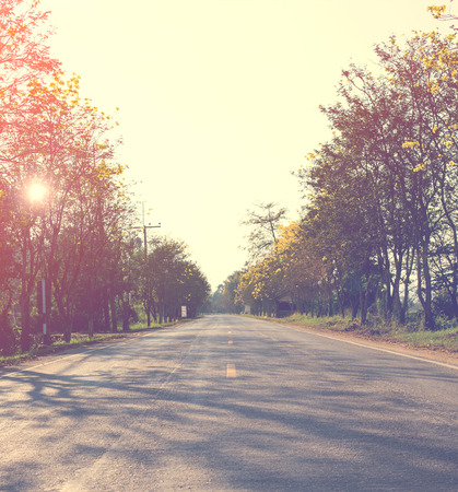 spring landscape: Landscape of road way in summer with tree forest ,Vintage color toned,nature background