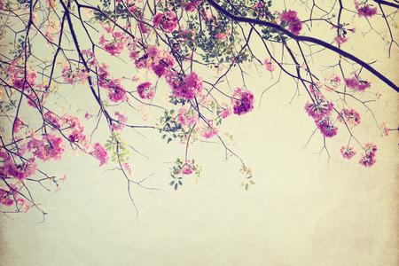 夏、ペーパー アート テクスチャに木の花のヴィンテージの自然の背景