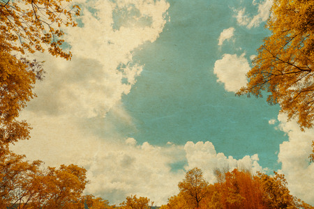 hojas antiguas: Vintage image of Autumn leaves on the sky background, old paper with retro filter effect Foto de archivo