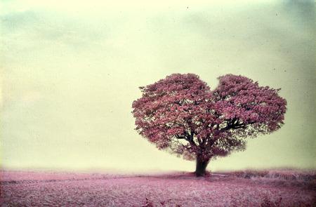 Årgång av rosa träd hjärta form, papper konst konsistens Stockfoto