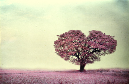 ピンクのツリー ハート形、ペーパー アート テクスチャのヴィンテージ