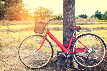 bicicleta retro: rústico paisaje con la bicicleta roja de la vendimia Foto de archivo