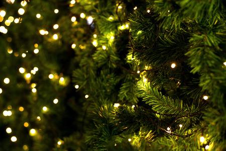 navide�os: �rbol de navidad en el fondo borroso