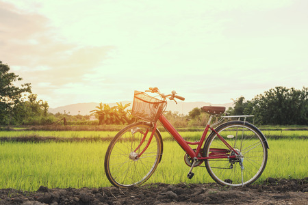 fun day: Red bicycle parked in meadow on a sunny morning Stock Photo