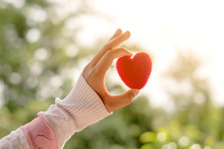 여성의 손을 아침 동안 태양에 붉은 마음을 들고