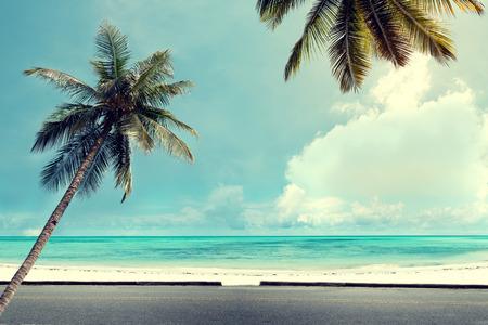 Landskap tappning natur bakgrund av kokospalm träd på tropisk strand blå himmel med solljus morgon i sommar, retro effektfilter