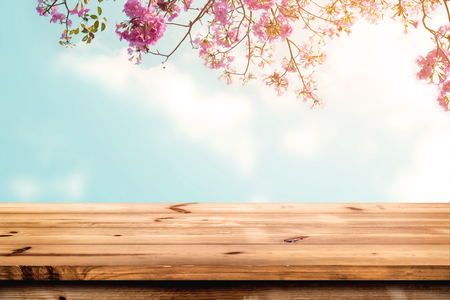 decks: Top of wood table with pink cherry blossom flower on sky background - Empty ready for your product display or montage.