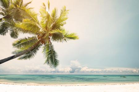 Landschap vintage natuur achtergrond van kokospalm op tropische strand kust met zonlicht in de zomer, retro effect filter