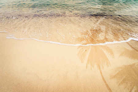 ocean wave: Palm tree shadow on the sandy beach with ocean wave - free space. vintage color tone effect
