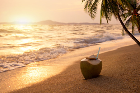 potation: Fresh coconut cocktails on sandy tropical beach at sunset time - vacation in summer. vintage color styles