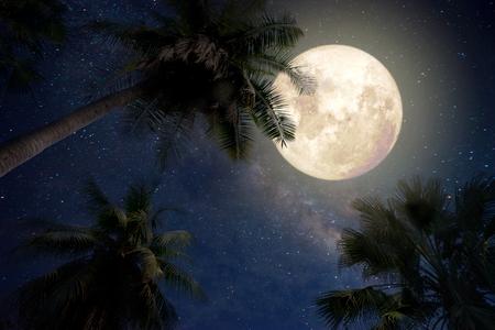 Bella fantasia di palme in spiaggia tropicale e la luna piena con il modo stella lattea nel cielo notturno di sfondo. opere d'arte in stile retrò con tonalità vintage (elementi di questa immagine luna fornita da NASA)