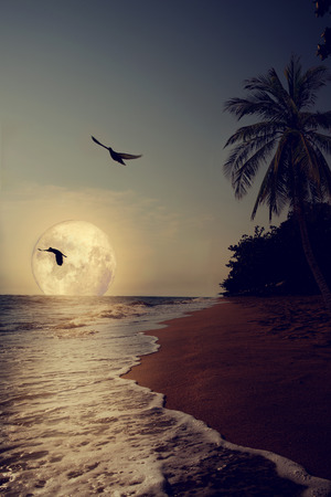 shore: Beautiful fantasy tropical beach with Milky Way star in night skies, full moon - Retro style artwork with vintage color tone (Elements of this moon image furnished by NASA)