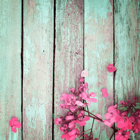 pink flowers on vintage wooden background, border design. vintage color tone - concept flower of spring or summer background