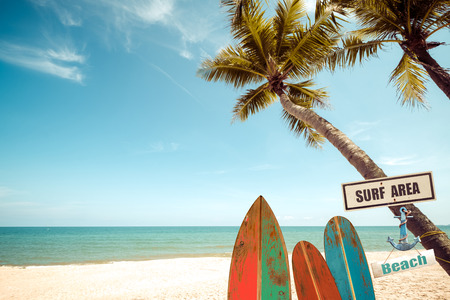 Vintage surf board with palm tree on tropical beach in summer. vintage color tone Stock Photo