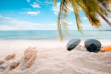 sandbar: Sunglasses on sandy in seaside summer beach with starfish, shells, coral on sandbar and blur sea background. Concept of recreation in summertime on tropical beach.  vintage color tone styles. Stock Photo
