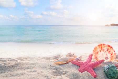 sandbar: Concept of summertime on tropical beach. Seaside summer beach with starfish, shells, coral on sandbar and blur sea background. vintage color tone.