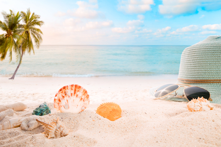 sandbar: Summer accessories on sandy in seaside summer beach with starfish, shells, coral on sandbar and blur sea background. Concept of recreation in summertime on tropical beach.  vintage color tone styles.