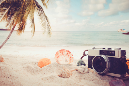 sandbar: The concept of leisure travel in the summer on a tropical beach seaside. retro camera on the sandbar with starfish, shells, coral on sandbar and blur sea background.  vintage color tone styles. Stock Photo