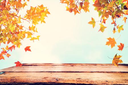 hermosos porches frontales de otoño Campo Viejo Portn Rstico En El Campo Paisaje De Otoo Con