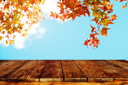 Top of wood table with beautiful autumn maple tree on sky background - Empty ready for your product display or montage. Concept of background in fall season Stock Photo