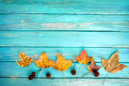 Beautiful maple leaves on vintage wooden background, border design. vintage color tone - concept of autumn leaves in fall season background Stock Photo