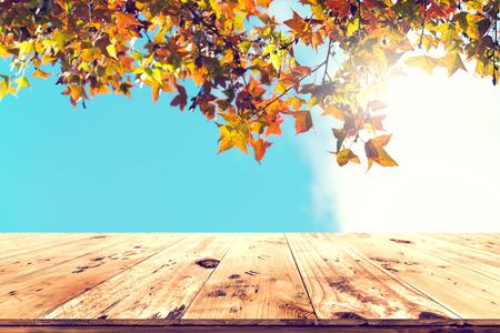 La parte superior de la tabla de madera con el árbol de arce hermoso del otoño en fondo del cielo - vacie listo para su exhibición o montaje del producto. Concepto de fondo en la temporada de otoño. Foto de archivo - 81099935