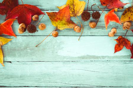 Schöne Ahornblätter auf Vintage Holz Hintergrund, Grenze Design. Vintage Farbton - Konzept der Herbst Blätter im Herbst Saison Hintergrund
