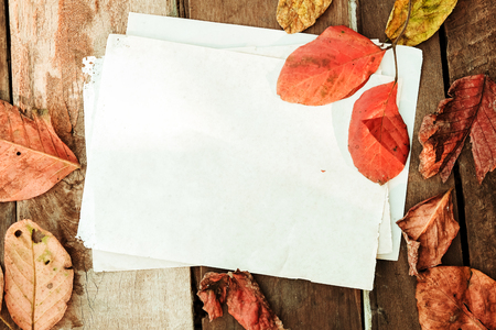 Beautiful maple leaves on vintage wooden background with old paper border design. vintage color tone - concept of autumn leaves in fall season background