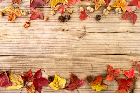 ヴィンテージの木製の背景、ボーダー デザインの美しいカエデの葉します。ヴィンテージ色のトーン - 秋シーズンのバック グラウンドで葉の秋の概 写真素材
