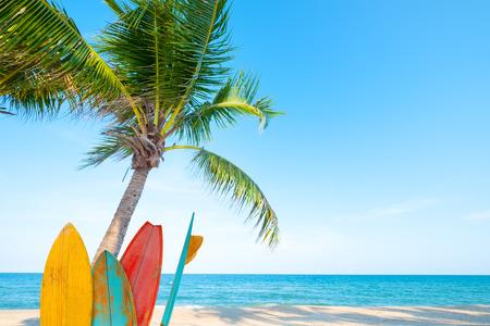 Tabla de surf vintage con palmera en playa tropical en verano.