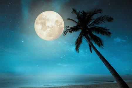 Hermosa playa tropical de fantasía con estrellas en los cielos nocturnos, luna llena - Ilustraciones de estilo retro con tono de color vintage.