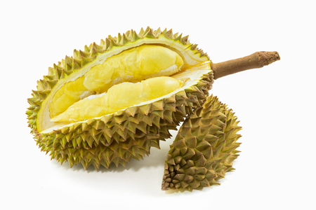 Durian fruit on white background. fruit of Thailand.