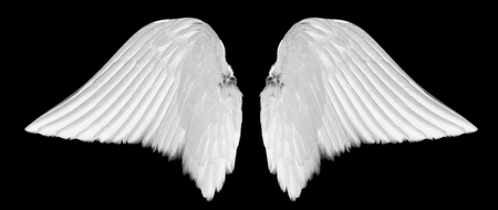 White angel wings isolated on black background Stock fotó